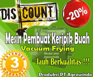 diskon mesin vacuum frying